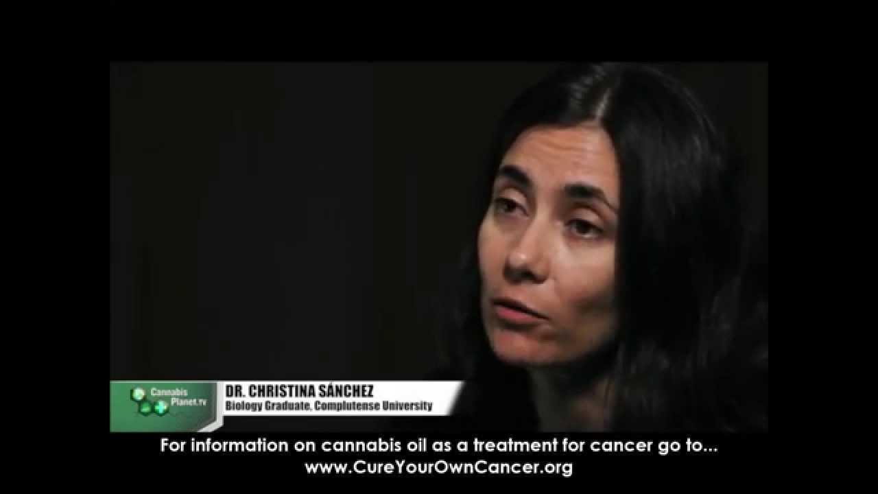 Dr.Christina Sanchez explains how cannabis kills cancer cells