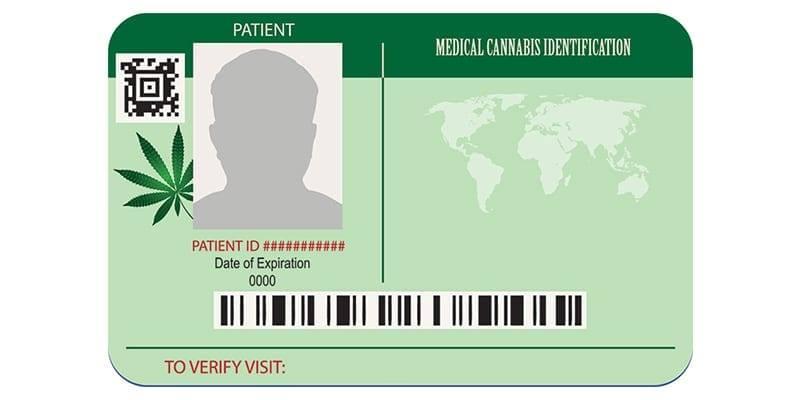 Κάρτα Ασθενών για την Χορήγηση Κάνναβης – The Green Greeks Τεύχος #7